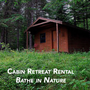 Backwoods Cabin Rental